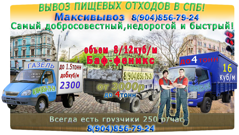 Вывоз пищевых отходов и мусора компанией Максивывоз
