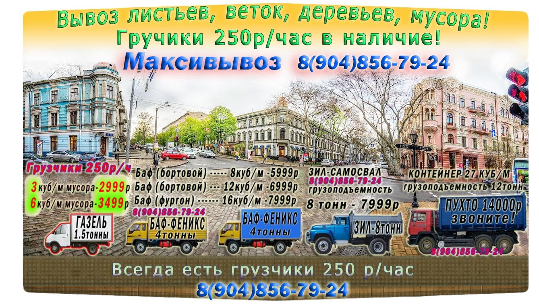 Вывоз листьев, веток, мусора в СПб от компании Максивывоз 8(904)856-79-24